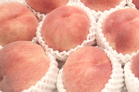 peach-of-souvenirs01